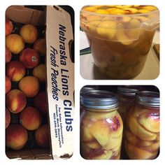 Noting beats a fresh canned peach in winter when you know how they where canned.  Lion's peaches in light syrup(pear juice stem juiced and canned from our own pears last year) #fitdad #homecanned #gardening