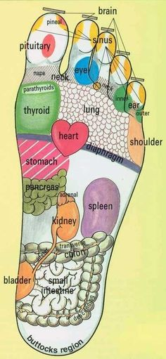 Foot Reflexology Chart: Use essential oils eucalyptus and peppermint in carrier oil, olive, jojoba, almond, grape seed, avocado, for foot massage