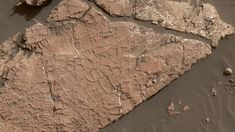 Scientists used NASA's Curiosity Mars rover in recent weeks to examine slabs of rock cross-hatched with shallow ridges that likely originated as cracks in drying mud.