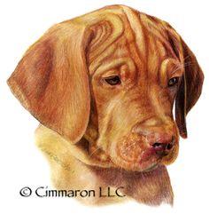 Vizsla Pup portrait painting