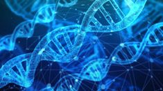 With its elegant double helix and voluminous genetic script, DNA has become the of darling of nucleic acids. In order for DNA to realize its potential—for genes to become proteins—it must . Dna Testing Kits, Dna Kit, Medical Coding, Medical Research, Fatiga Adrenal, Genome Sequencing, Human Dna, World Cancer Day, Medical Imaging