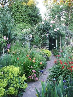Looking down, in early July by the vintage cottage, via Flickr