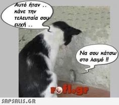 """""""Make a last wish"""" - """"To choke you"""" Funny Texts, Funny Jokes, Funny Greek Quotes, Humorous Quotes, Have A Laugh, Funny Photos, Laugh Out Loud, Picture Video, Funny Animals"""