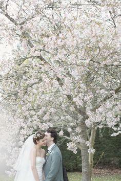 Cherry Blossoms | Spring Wedding | Bridal Musings Wedding Blog
