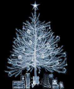 Sapin de Noël aux rayons X - La boite verte
