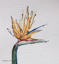 result for how to paint succulents step by step watercolor video . Watercolor Video, Pen And Watercolor, Watercolor Flowers, Watercolor Landscape, Bird Of Paradise Tattoo, Birds Of Paradise Flower, Paradise Plant, Art Paintings, Watercolor Paintings