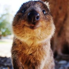 """And stylish!"" 