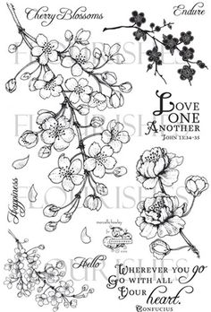 lower right hand flower! Copic, Tatto Floral, Flor Tattoo, Floral Drawing, Blossom Tattoo, Hand Drawn Flowers, Japanese Flowers, Botanical Illustration, Flourish