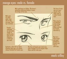 manga_eyes__male_vs_female_by_markcrilley.jpg (975×858)