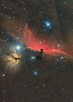 hubble pictures horsehead - HD2331×3256