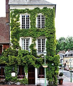 The overgrown ivy peppered with pink flower boxes add a storied charm to the quaint (and quite famed) restaurant Auberge de l'Abbaye nestled in a village in Normandy.