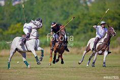 joueur de polo à cheval