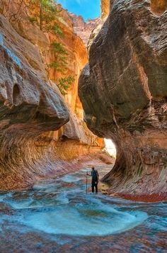 Zion National Park, Utah, United States.