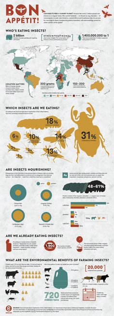 Around the world two billion people eat insects on a regular basis. The current hotbeds-or should we say, hot pots-of consumption include Latin America, central Africa and Southeast Asia. As we look for new ways to feed a burgeoning global population, will entomophagy spread to other corners of the globe?