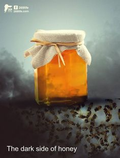 """As with other commercial farming practices, honey production is about making money, not about treating bees with kindness. Queen bees are selectively bred and artificially inseminated. Some beekeepers clip the queen's wings in order to control her movement. The queen is typically """"replaced,"""" which is to say """"killed,"""" every year or two to maximize production, though a queen bee would typically live to be five years old in her natural environment."""