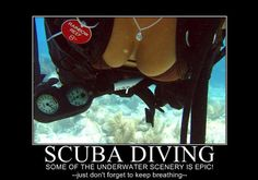 Funny Side of Scuba Diving (17 Pics)
