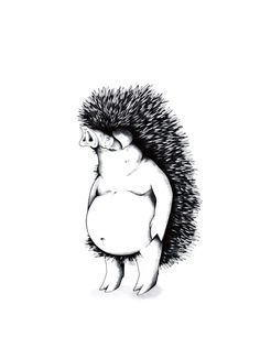 Schweinigel │ jompitz
