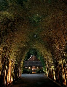 CHIANG MAI: A charming boutique property inspired by local history and culture, Tamarind Village combines the winning elements of design, service and comfort in a stylish Chiang Mai hotel that offers guests a tranquil setting, genuine hospitality and attention to detail throughout. (Thailand)