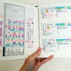 I'm not sure about the rest of this bullet journal, but I like the habit tracker.
