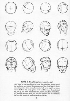 Drawing heads, brow line importance.