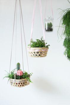 Plantas suspensas em cestinhas de vime. #jardimsuspenso #verticalgarden #plantas…