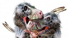 Encontrada uma espécie de tiranossauro canibal