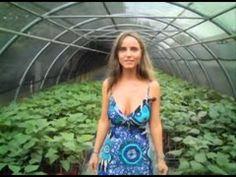 ▶ Catambra - Presentazione della pianta antizanzare - YouTube