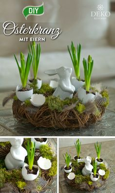 DIY: hübschen Osterkranz mit Eierschalen verzieren With egg shells you can create beautiful Easter wreaths. Whether combined with simple colors or with plants, the bowls are eye-catchers and ar Easter Table Decorations, Basket Decoration, Easter Wreaths, Holiday Wreaths, Christmas Swags, Christmas Diy, Fleurs Diy, Valentine's Day Diy, Egg Shells