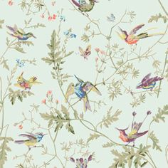 Hummingbirds F62/1004 - Icons Fabric - Cole & Son