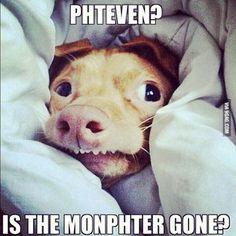 #phteven Instagram photos | Websta
