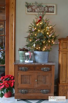 small Christmas tree - love this fresh tree in a tin bucket
