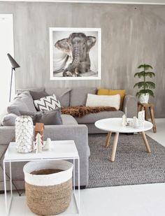 ambiance naturelle est artistique, empreinte d'exotisme, déco salon gris, couleur peinture salon et mobilier gris, petites touches de couleur