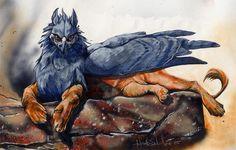 » Heather Schumacher. Совы, волки и другие прекрасные животные » Картинки, эскизы, рисунки карандашом и тушью.