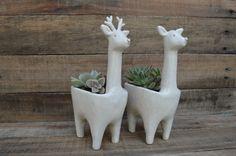Mis ciervos para Verde cactus cerámica https://www.facebook.com/verdecactusceramica?fref=ts