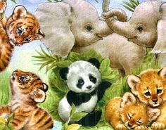 Penny Parker Images - baby elephants, lions, panda & tigers