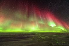 Aurora Borealis Taken by Francis Anderson on February 28, 2014 @ About 4km just outside Tuktoyaktuk, Northwest Territories Canada on the arctic ocean