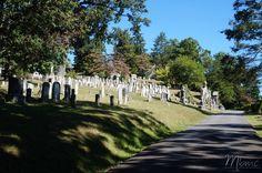 Sleepy Hollow ville légendaire, connue pour son effroyable cavalier sans tête tout droit sorti de l'imaginaire de Washington Irving et retranscrit au cinéma par Tim Burton dans le film du même nom avec l'acteur Johnny Deep.