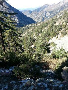 Hiking Ice House Canyon Trail,  Mount Baldy CA