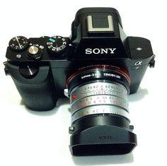 Leica 35mm f2 Summicron on Sony ILCE-7 (A7)