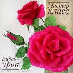 Новый проект)))