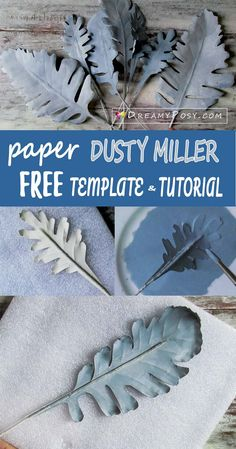 Paper Dusty Miller, free template and tutorial, paper flower tutorial
