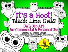 Its a Hoot! Black Line Owl Clipart Graphics for Commercial Use, priced (30 images!)