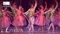 balet snd bratislava - Hľadať Googlom National Theatre, Bratislava, Ballet, Movies, Movie Posters, Films, Film Poster, Cinema, Movie