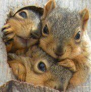 Cuteness!!