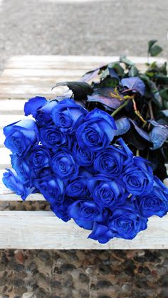 Send a beautiful bouquet of blue roses. Send a beautiful bouquet of blue roses. Blue Roses Wallpaper, Flower Background Wallpaper, Flower Backgrounds, Luxury Flowers, Exotic Flowers, Beautiful Rose Flowers, Beautiful Flowers, Blue Rose Bouquet, Rosa Rose