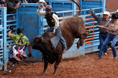 New Mexico True Events - New Mexico Tourism - Travel & Vacation Guide