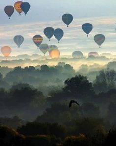 Wow! The skies are colored by #hot #air #baloons.
