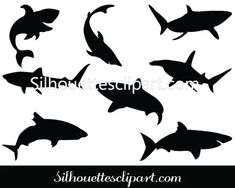 This shark silhouette vector is ideal for sea vector designs as well as fish vector illustrations have eps, png and jpeg files ideal comes with free & premium. Shark Silhouette, Silhouette Clip Art, Fish Vector, Art Drawings Sketches, Vector Design, Silhouettes, Illustration, Free, Illustrations