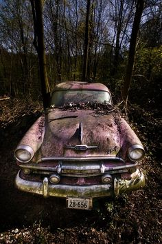 Great shots of oldtimers in nature, by Sven Fennema. More shots at http://www.jackcredo.com/lifestyle/oldtimers-consumed-by-nature/