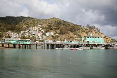Take me back to Catalina Island...